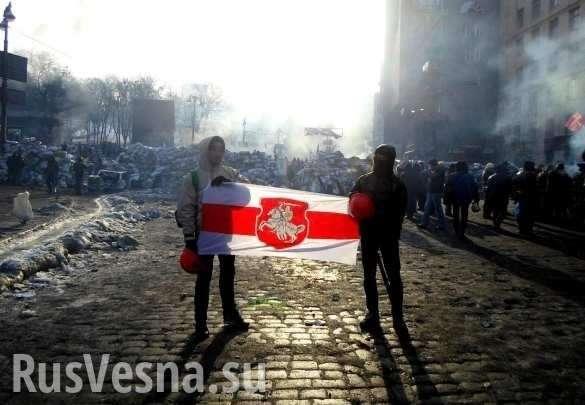 Белорусские националисты хотят разорвать страну при поддержке Украины | Русская весна