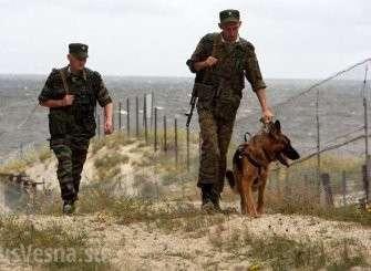 В СНГ готовятся встречать боевиков: укрепление границ, реформы, учения