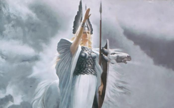 Удел Валькирии – держать энергощит бойца на поле боя, трансформируя и поглощая силу вражеских ударов