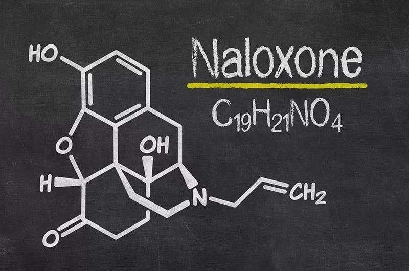 Школьная наркомания в США: средство от передозировки налоксон становится обязательным для школ