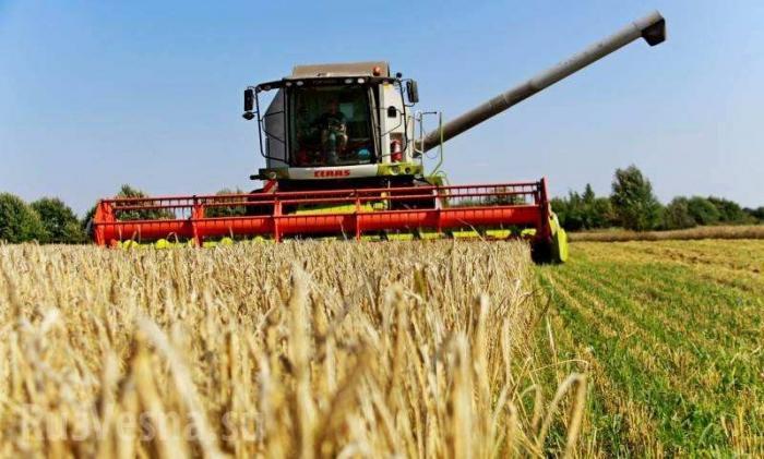 Россия стала крупнейшим поставщиком сельхозтоваров в мире