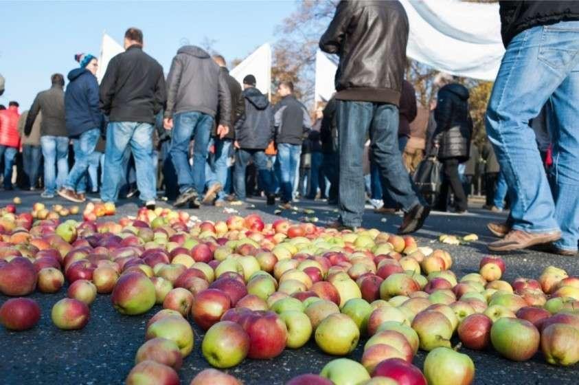 Польские яблоки останутся в Белоруссии – так постановил Россельхознадзор