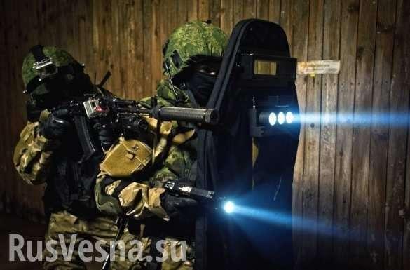 Минобороны показало в действии «Змея Горыныча» и ослепляющий щит, вызывающий галлюцинации (ВИДЕО) | Русская весна