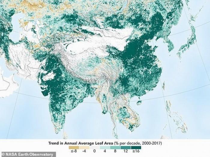 Неожиданная новость: Индия и Китай озеленяют нашу планету опережающими темпами!