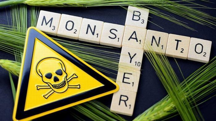 ГМО монстр Байер нагло лезет в Россию со своими ГМО соей, рапсом, кукурузой и пшеницей