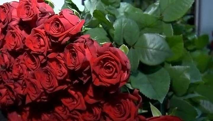 Розы вне политики: за цветами лучше ехать не в Голландию, а в Мордовию