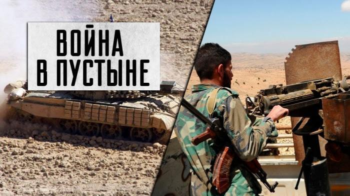 Сирия: армия готовится к операции против ИГИЛ в пустыне