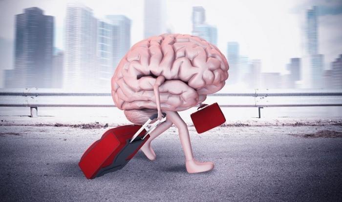 «Русские мозги»: сколько на Западе готовы за них платить на самом деле?