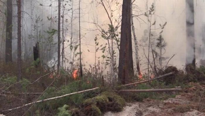 Сгорела половина села: в Забайкалье ввели режим ЧС, из-за степных пожаров