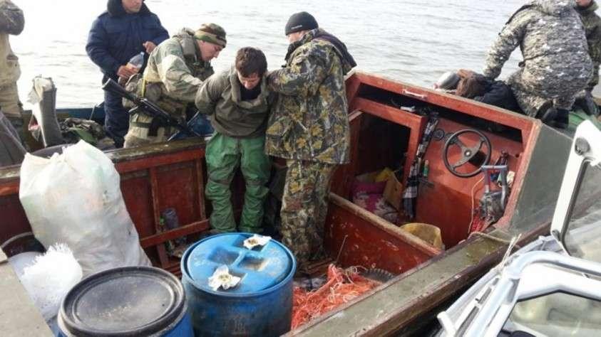 Волгоградские полицейские и оперативники ФСБ раскрыли целый браконьерский синдикат