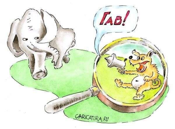 Страны Балтики колются, плачут, но продолжают голосовать за санкции