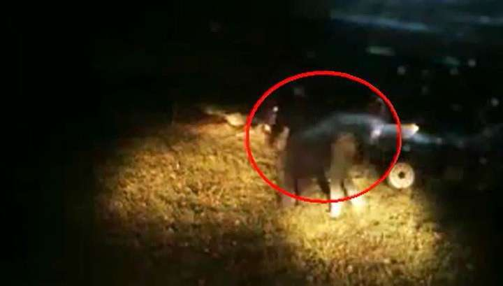 Расстрел, который устроили каратели, сняли на видео