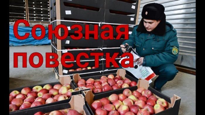 Скандал, запрет и отсрочки – главные события Союзного государства России и Беларуси в апреле