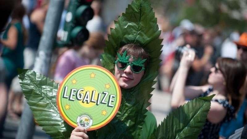 Новости Голландии: марихуана, марихуана и ещё раз марихуана