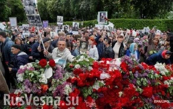 Украинские фашисты взбесились к Дню Победы | Русская весна