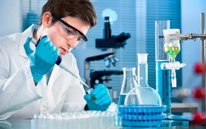 Правительство России выделило средства на создание 15 научно-образовательных центров мирового уровня