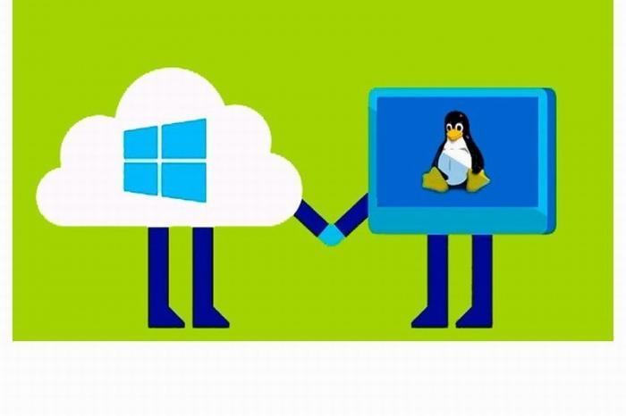 Microsoft к 2020 году готовит сразу две новых операционных системы