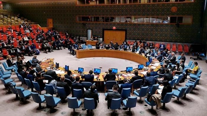 СБ ООН проведет экстренное заседание в связи с принятием на Украине закона о языке