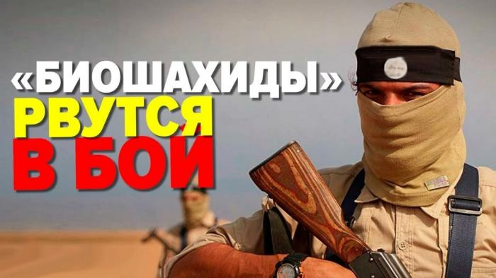 ФСБ предупредила о новой террористической угрозе для России