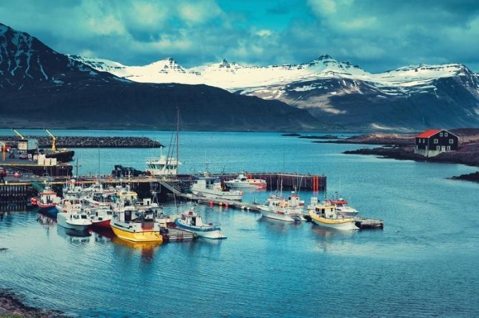 Количество рыболовных судов в мире удвоились с 1950 года, но вылов снизился на 80 процентов
