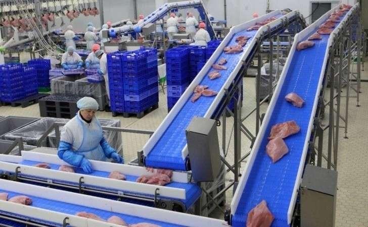 В Пензенской области запущен крупнейший в Европе завод по переработке индейки