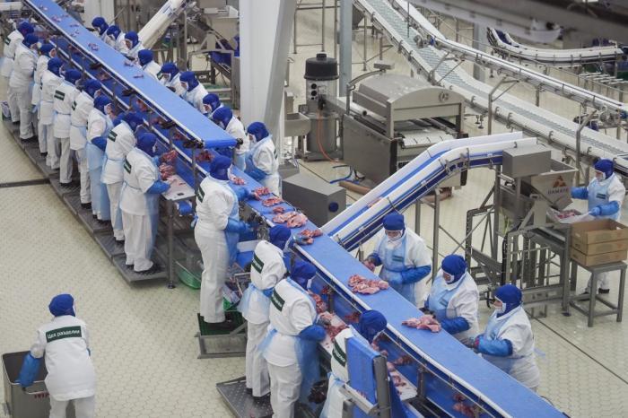 ВПензенской области ввели в эксплуатацию крупнейший вЕвропе завод попереработке индейки