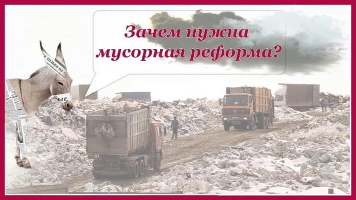 Зачем России нужна мусорная реформа и в чём её суть? Уши машут ослом