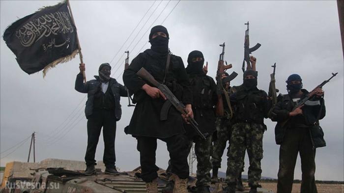 Идлиб и Латакия: наёмники США готовят наступление, сосредотачивая большие силы