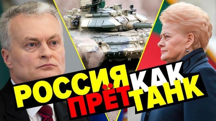 Литва избрала себе нового президента, но это её уже не спасёт