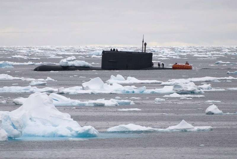 В гости к норвежским экологам прибыл неожиданный гость