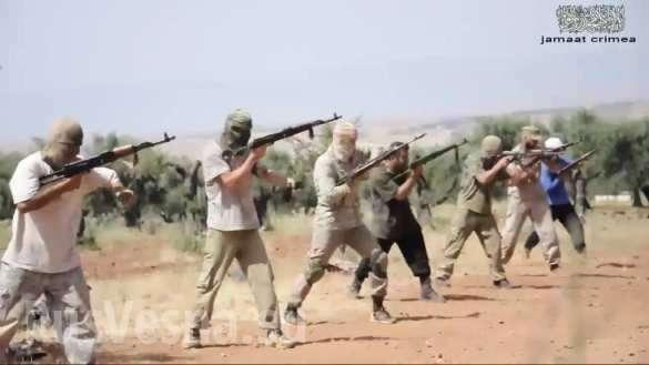 Пушечное мясо: боевики c Украины для войны в Сирии (ФОТО) | Русская весна