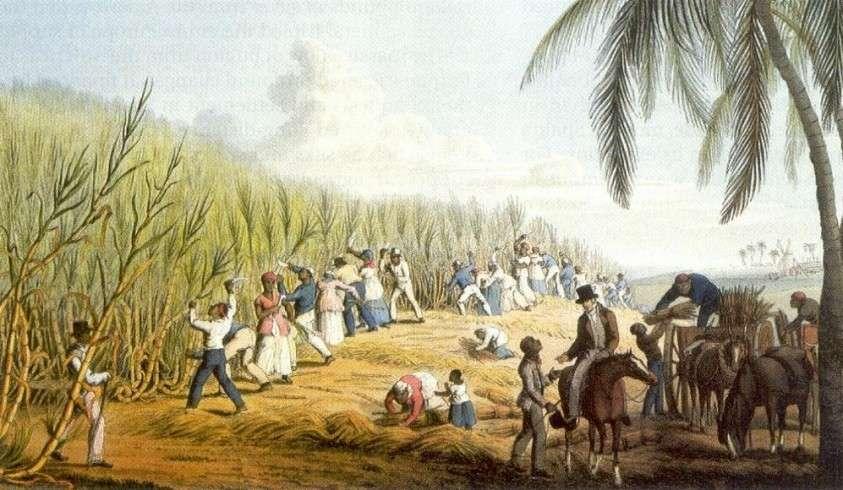 Рабство в США официально было отменено лишь в 2013 году! Великая Америка говорите?