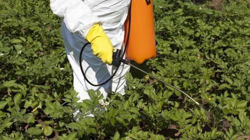 Обработка растений агрохимикатами