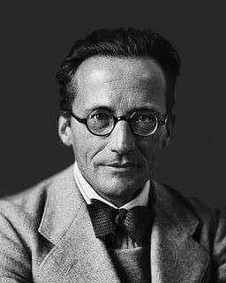 Кот Шрёдингера – кого так люто ненавидел австрийский физик?