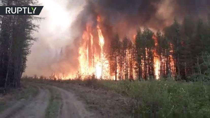 Стена огня: очевидец заснял мощный лесной пожар в Якутии