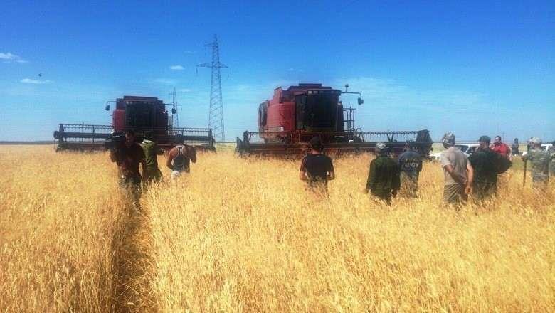 Волгоградские фермеры с вилами и лопатами встали на защиту своего урожая. Народ до крайности доводят... Доиграются скоро..