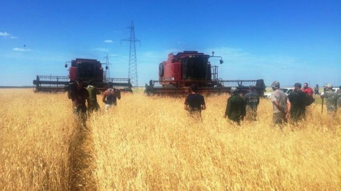 Волгоградские фермеры с вилами и лопатами встали на защиту своего урожая Доиграются скоро