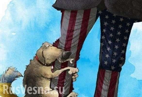 На Украине признают очевидное: «Америке плевать на нас» (ВИДЕО)