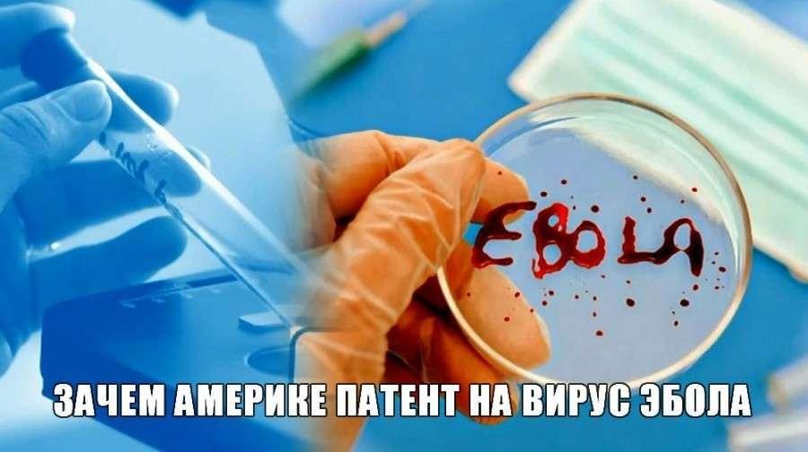 Зачем Америке патент на вирус Эбола