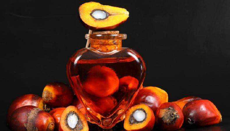 Пальмовое масло – с чем его едят и кто его ест? Откровения технолога
