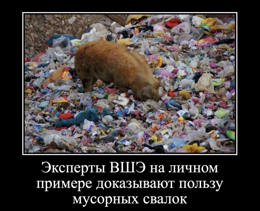 Профессор МГУ выпорол профессора ВШЭ. Мусорные свалки – это химические бомбы замедленного действия