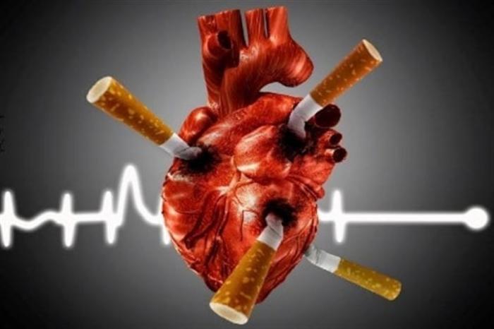 Почему власть не запрещает употребление алкоголя и табака?