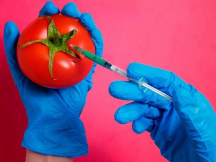 ГМО 2.0 Редактирование генов растений убивает наверняка
