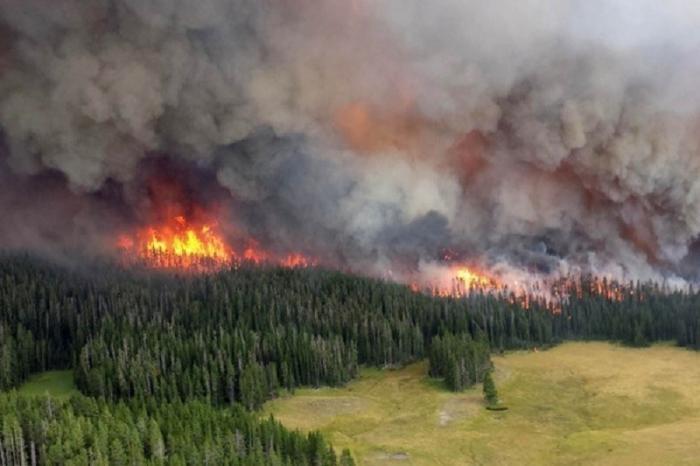 Пожары в Прибайкалье и Красноярском крае охватили уже более 1,4 миллиона гектаров леса
