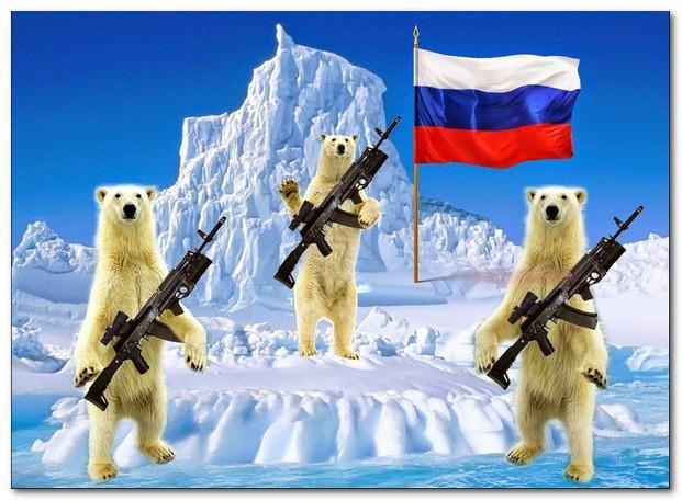 Арктика привыкает к автомату Калашникова