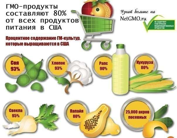 Берегитесь еды с ГМО! Она смертельно опасна для всего живого
