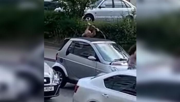 Это Европа: в Германии мигрант из Сирии убил мечом гражданина Германии уроженца Казахстана