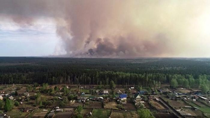 Как работают «коммерческие» поджоги леса в России?