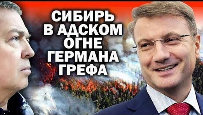 Лесные пожары в Сибири: кто стоит за преступлением века?