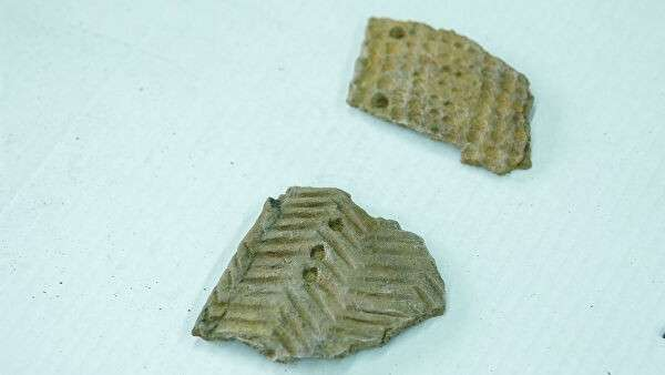 Фрагменты орнаментированной керамики неолита